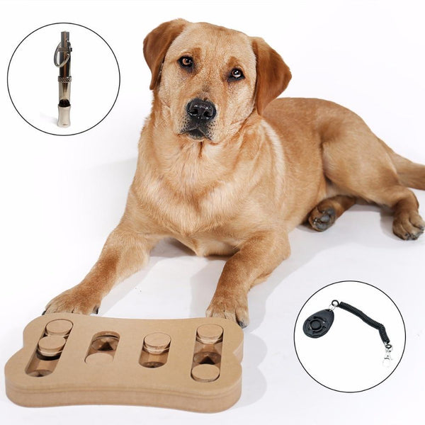 Bone Shape Funny Game Pet Interactive Toys For Dog - Max and Maci's Store
