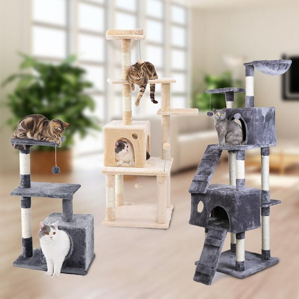 Max and Maci's Store Dog Toys Cat Furniture Playing For Fun