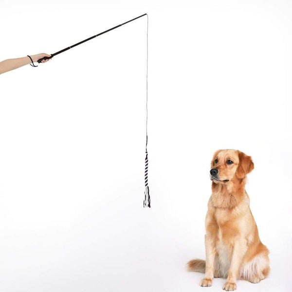 Dog Flirt Pole Training Exercise Rope Toy - Max and Maci's Store