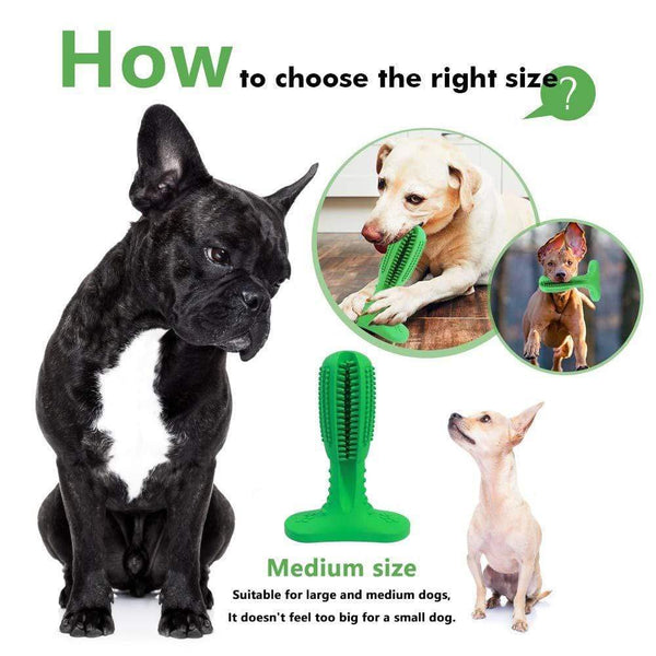 Dog Toothbrush Mint Chew Toys - Max and Maci's Store