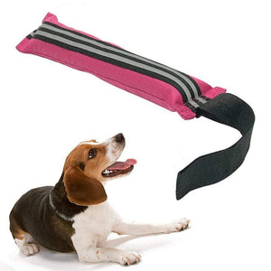 Max and Maci's Store Dog Toys Dog Toy Pull Bite Belt With Strong Handle