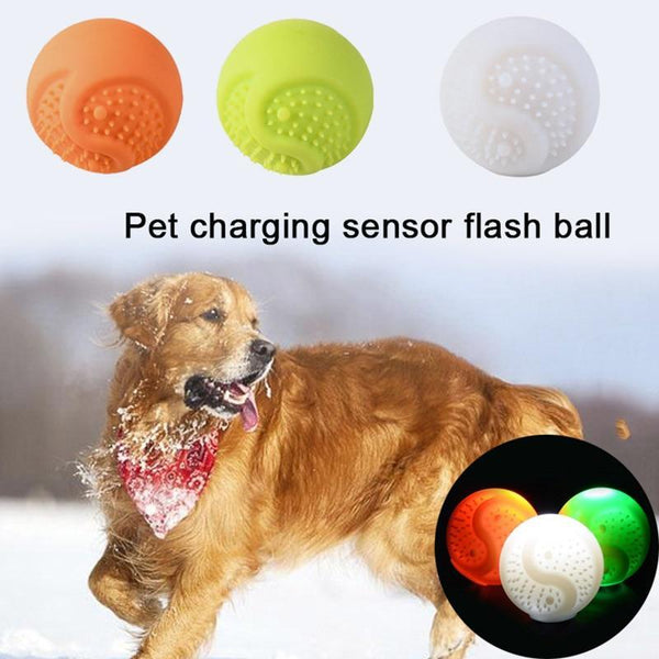 Flashing Ball Shape Silicone Led Light Dog Funny Toys - Max and Maci's Store