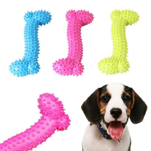 Max and Maci's Store Dog Toys random / M rubber Bone shape sound Pet Toy