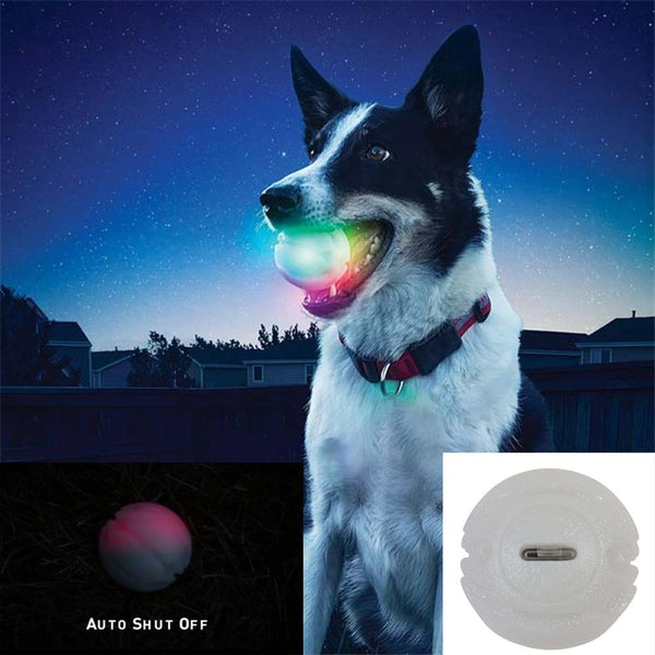 Max and Maci's Store Dog Toys WHITE / free size LED Glowing Toy Ball for Dog