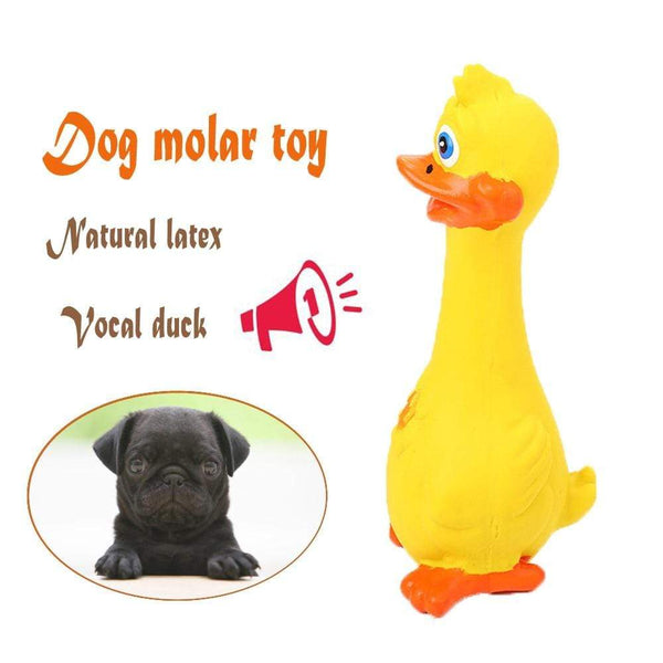 Natural Latex Duck Sounding Toy Dog - Max and Maci's Store