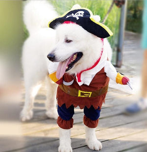 Max and Maci's Store Pet supplies Pirate / L Funny Dog Costumes