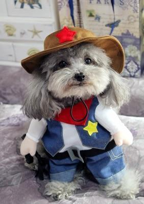 Max and Maci's Store Pet supplies West  cowboy / S Funny Dog Costumes