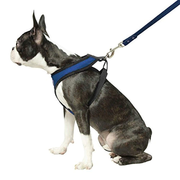 Small Dog Harness With Breathable Mesh - Max and Maci's Store