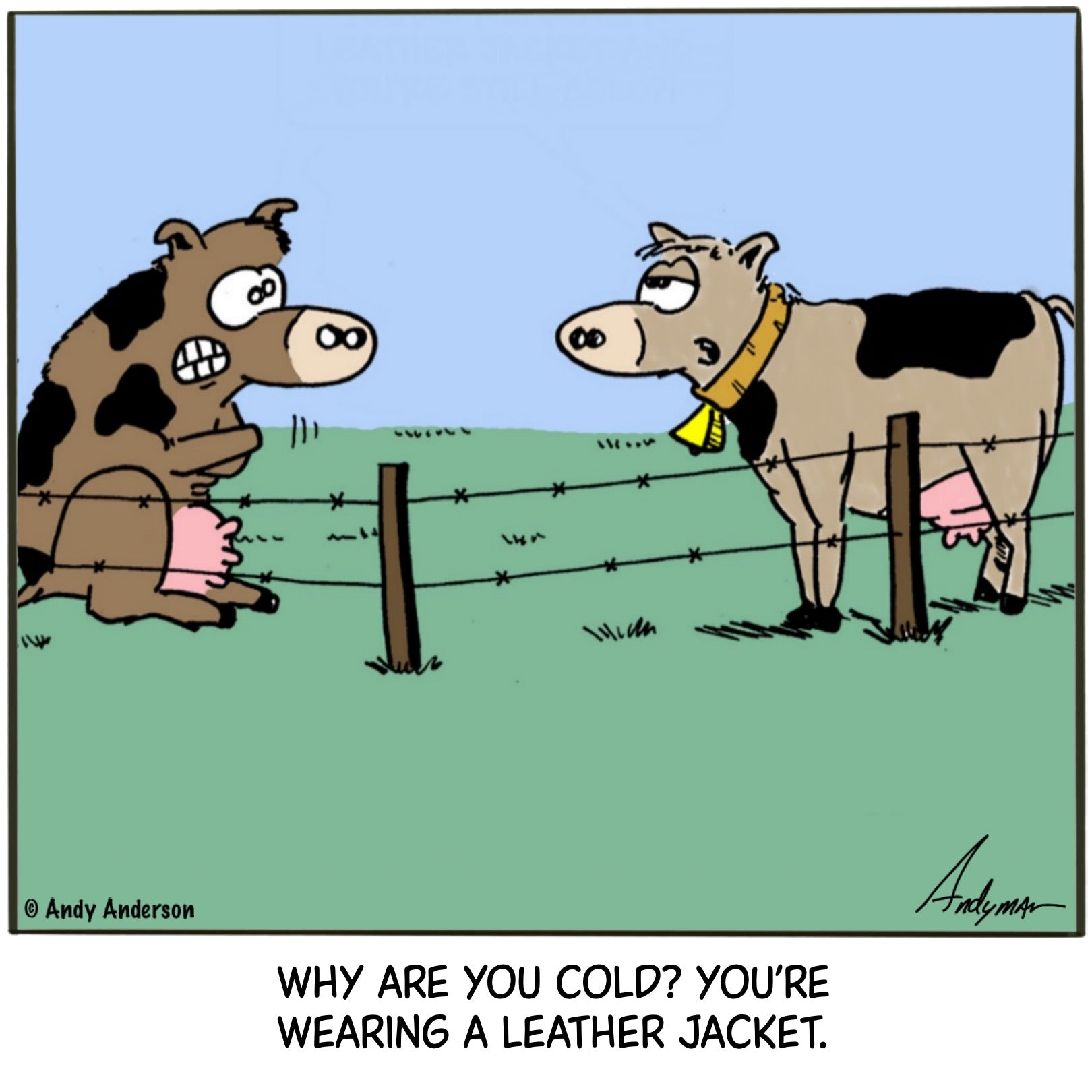 Cartoon about cows being cold even though they're wearing leather