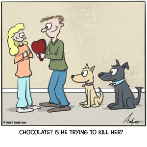 Cartoon about dogs watching owner give chocolate and wondering is he trying to kill her