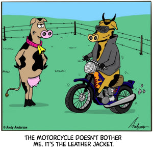 Cow with leather jacket cartoon by Andy Anderson