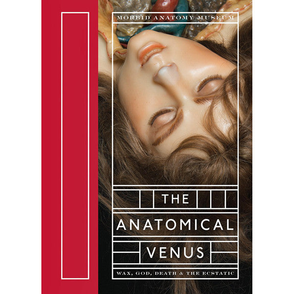 Anatomical Venus: Wax, God, Death and the Ecstatic