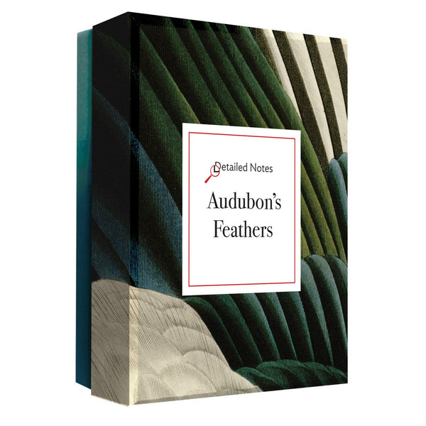 Audubon's Feathers Notecards Box Set