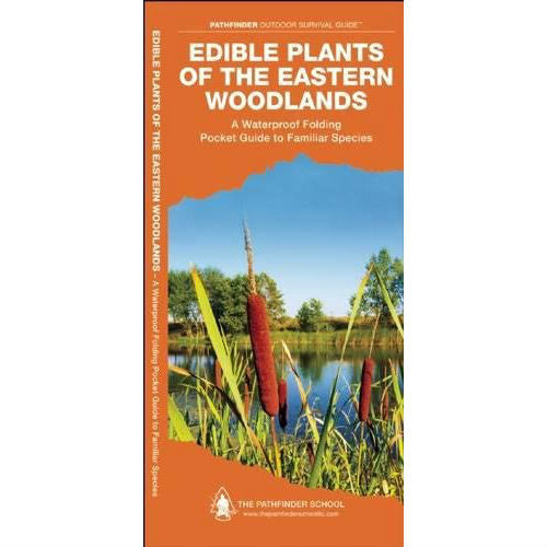 Edible Plants of the Eastern Woodlands: A Folding Pocket Guide to Familiar Species