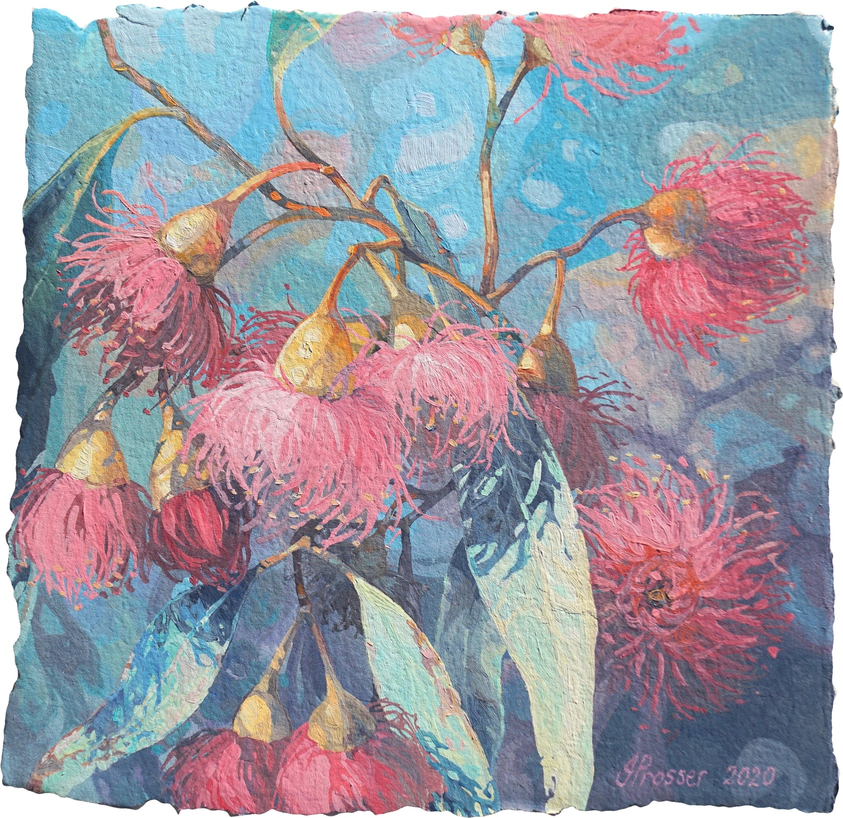 Pretty Pink Gum Flowers by Jaime Prosser