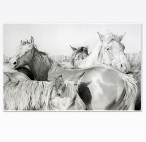 Open image in slideshow, Horse print by JAIME PROSSER ART