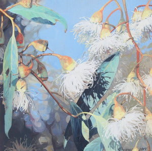 AUSTRALIAN ART - White Gum Flowers by Jaime Prosser