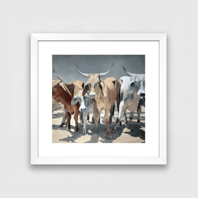 BUY AUSTRALIAN ART - Northern Longhorns Print - JAIME PROSSER ART