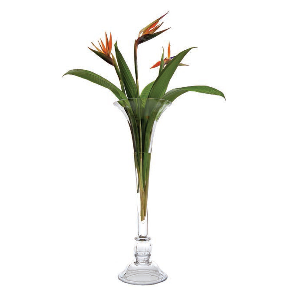 Classic Glass Vase, Paris Collection