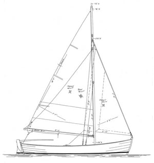 13'9 Willy Winship STUDY PLAN DIGITAL