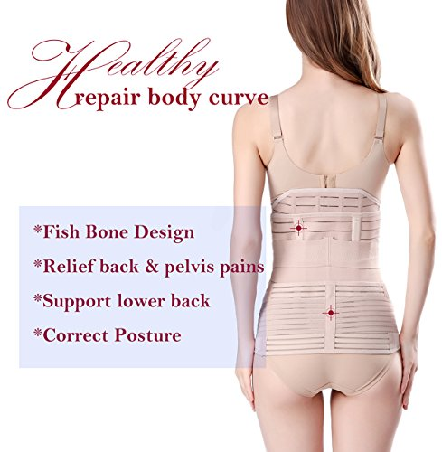 Belt Shapewear, Recovery Belly/Waist/Pelvis