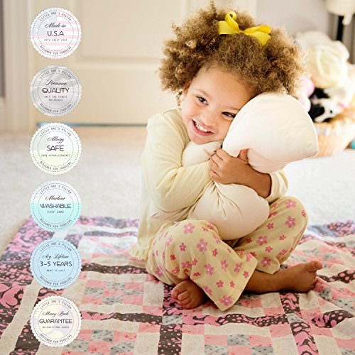 Toddler Pillow, Organic Cotton Shell, HandCrafted in USA