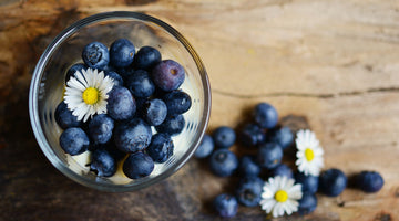 Blue Berries - The small, really big super food
