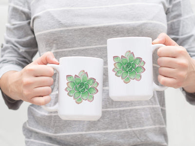 SET OF 15oz Mugs with Green Succulent