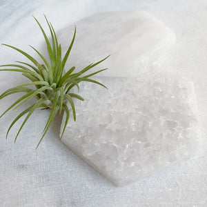 Selenite Hexagon Cleansing + Charging Plate