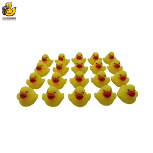 City Expansion Pack - the Duckietown project store