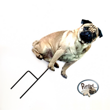 Load image into Gallery viewer, Instant Pug by Puggled