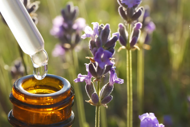 Lavender Extract, an Undiscovered Acne Treatment?