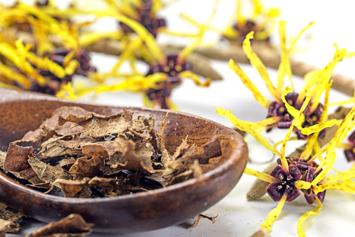 5 Wonders of Witch Hazel for Skin