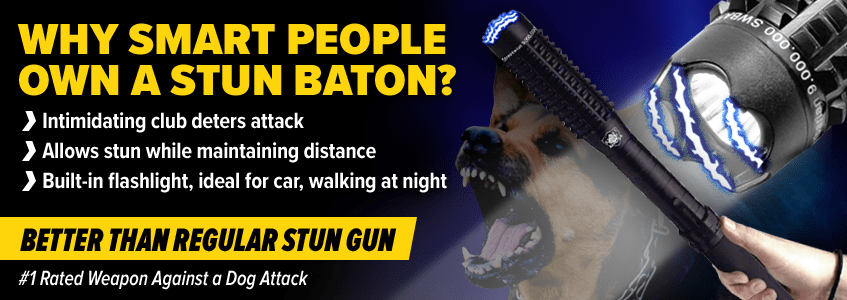 Best Baton Stun Guns For Sale | Expandable Stun Gun Baton | The Home