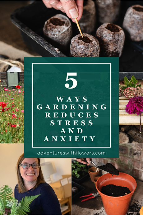 5 ways gardening reduces stress and anxiety