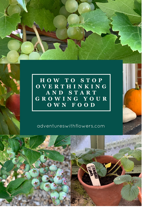 How to stop overthinking and start growing your own food