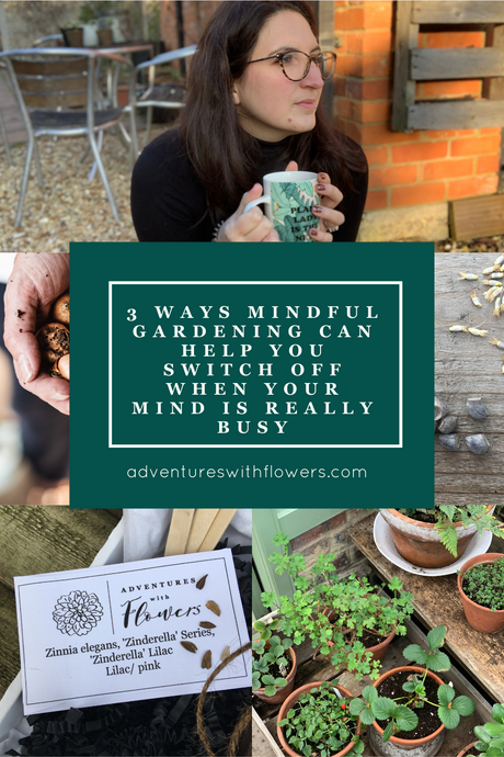 3 ways mindful gardening can help you switch off when your mind is really busy