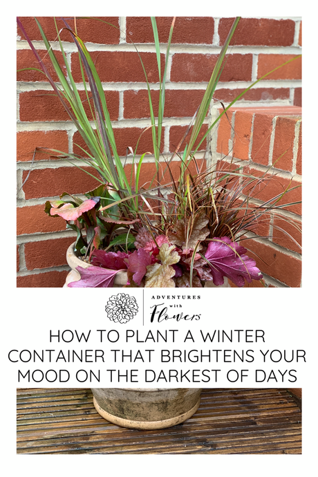How to plant a container that brightens your mood on the darkest days