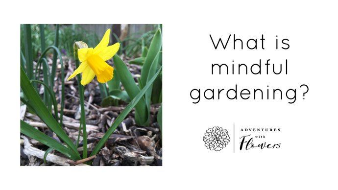 What is Mindful Gardening?