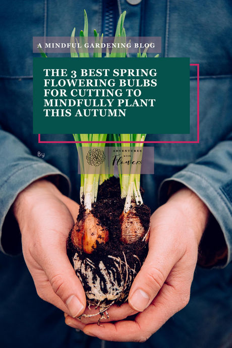 The 3 best spring flowering bulbs for cutting to mindfully plant this autumn
