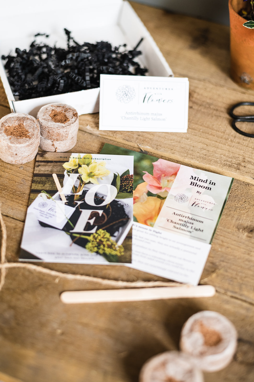 Mind in Bloom Box Gift Experience