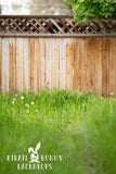 Tall Grass by Wooden Fence Digital Background