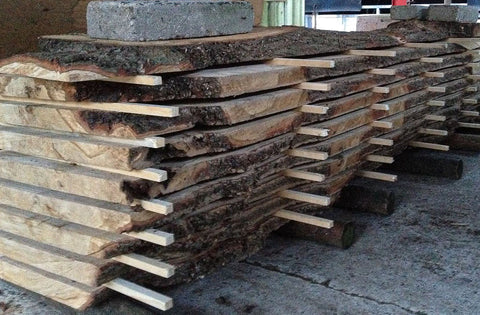 Local Oak timber drying in stick