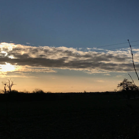 winter sunset over fields
