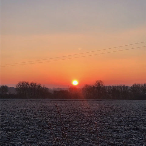winter sunrise over frosty fields