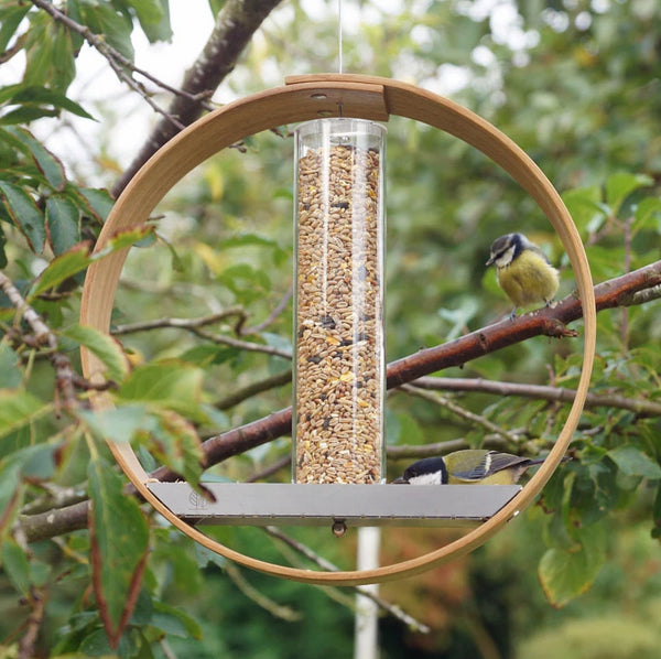 Bird Seed Feeder - LayerTree