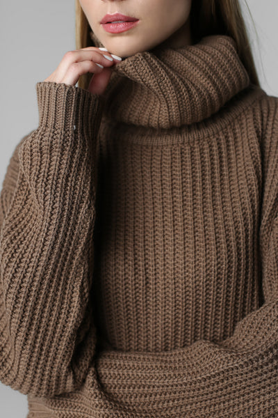 Big sweater with neck (nut)