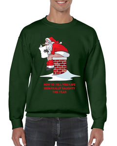 HOW TO TELL YOU'VE BEEN NAUGHTY CHRISTMAS SWEATER Jumper BanterKing Small Green 1 JUMPER
