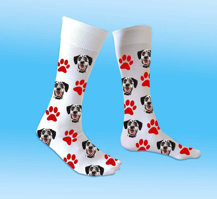(ADD ANY FACE) MAKE YOUR OWN DOG SOCKS BanterKing