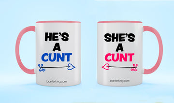 TWO TONED LARGE 11 OZ BANTER MUG Mug BanterKing